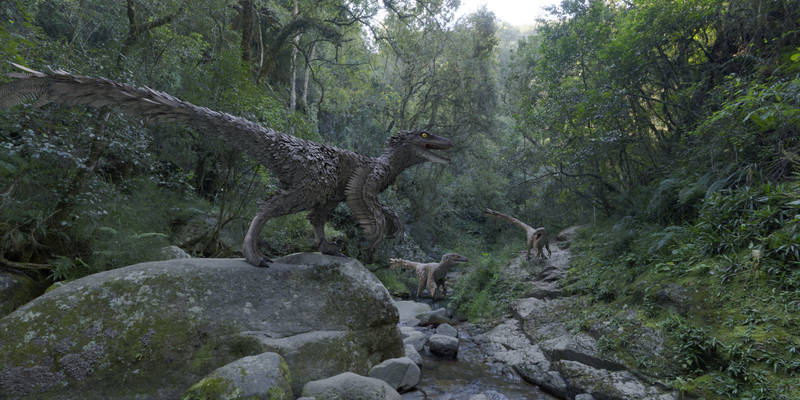 Velociraptor group in a forest