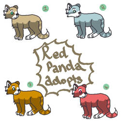 Red Panda Adoptables by xxAlice18