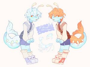 wish upon a shrimp