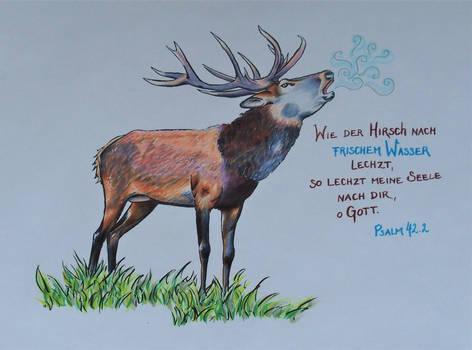 As The Deer...