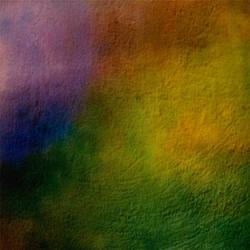 rainbow flies