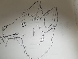 Wolf by KarasuFang