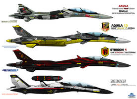 IFX Project - Special Livery - ACE COMBAT Baddiest