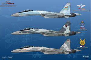 Sukhoi Su-35S Flanker-E - Other Operators