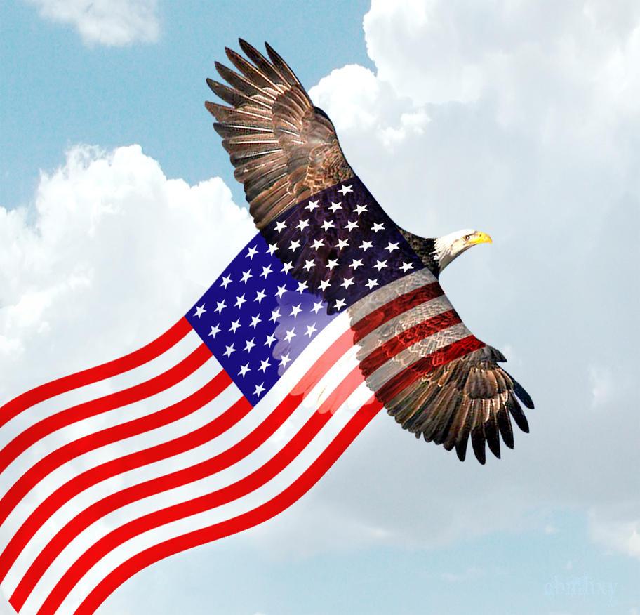 American Eagle Flag Head