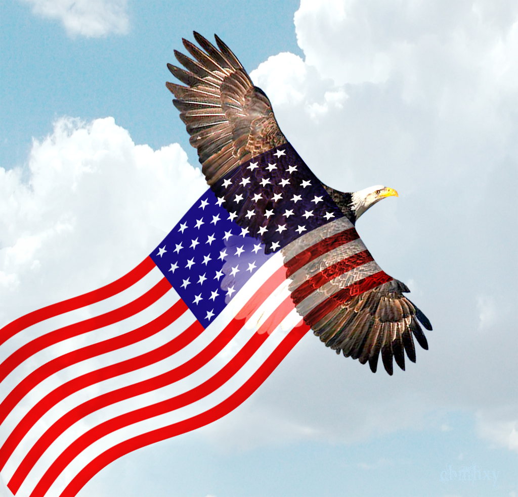 Uncategorized Bald Eagle American Flag bald eagle flying american flag by xybutterfly on deviantart xybutterfly