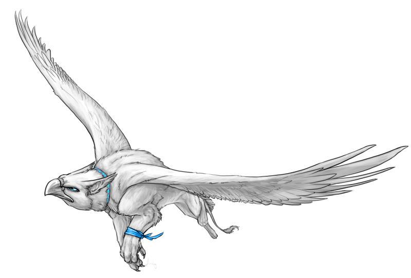 GraySketch: Snow, the Gallor