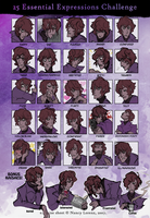 25 Essential Expressions of Kaisae