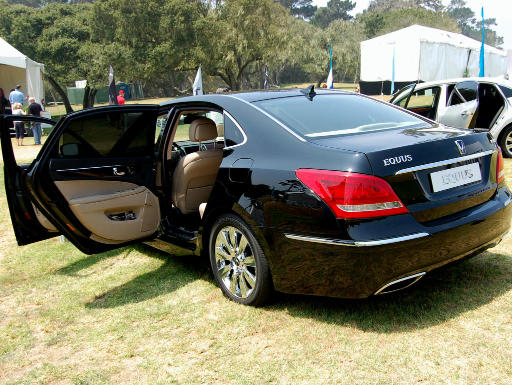2010 hyundai equus luxury car by partywave on deviantart. Black Bedroom Furniture Sets. Home Design Ideas