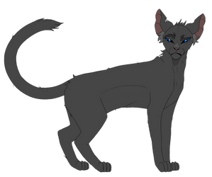 ~  Crowfeather  Warriors references by LysitheaWO
