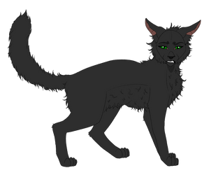 ~| Hollyleaf| Warriors references by LysitheaWO