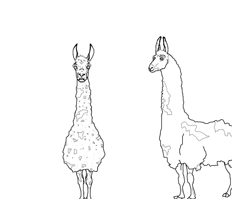 Line Drawing Llama : Llama line art by joltbelle on deviantart