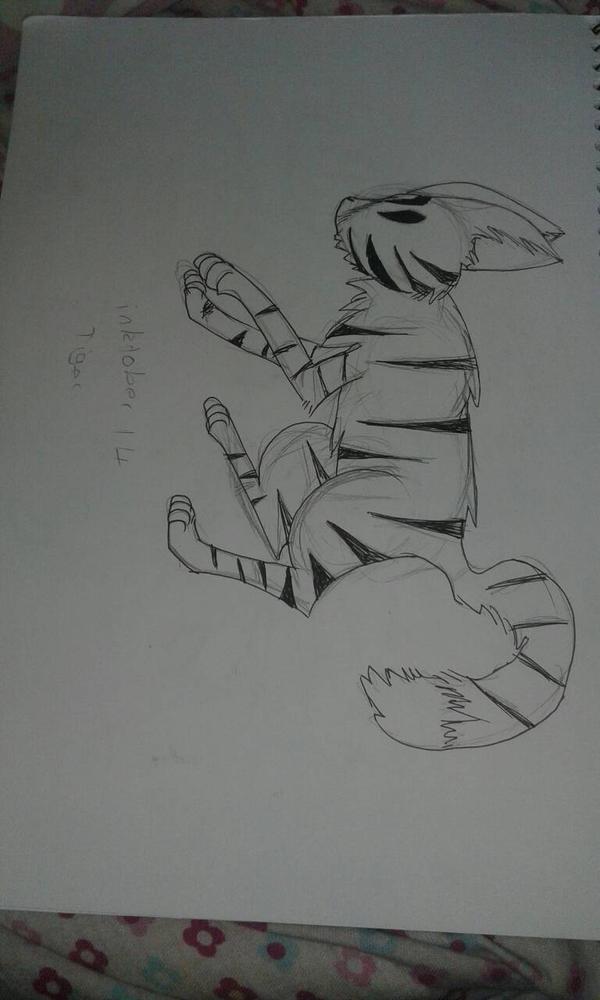 Inktober Day 14: Tiger by zencat61