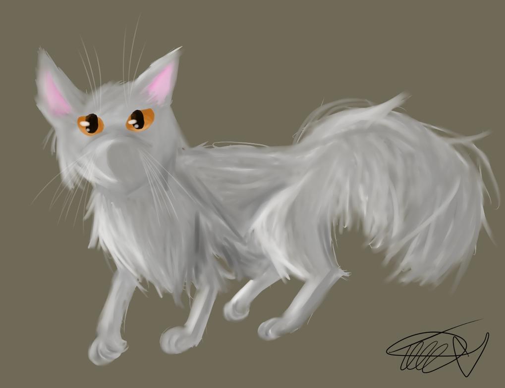 Long Furred Cat by zencat61