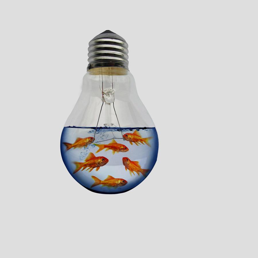 lightbulb fish tank by designertheo on deviantart