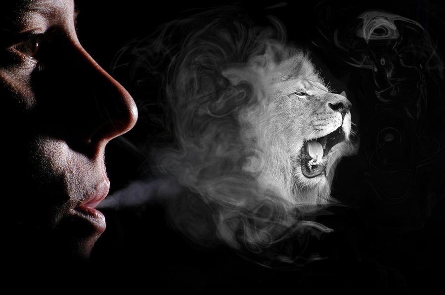 23 Beautiful SMOKE ARTS – Photoshop Website – Tutorials,Brushes & more