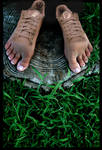 Trainer feet