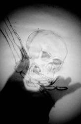 skeleton shadows