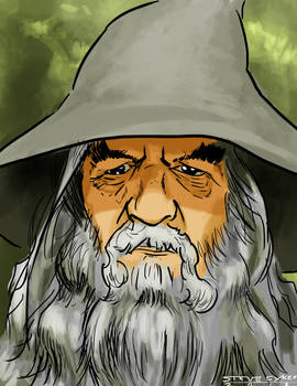 Old Greybeard