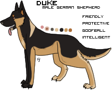 Duke's reference by gailagj