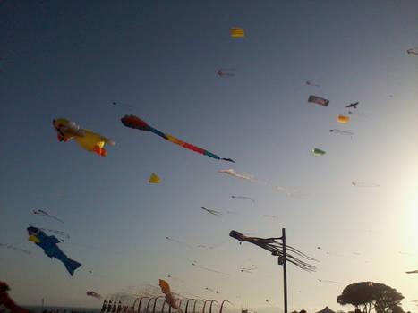 Kite festival 01