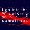 Wizarding World by HealingGoddess