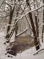 Dutch winter VII