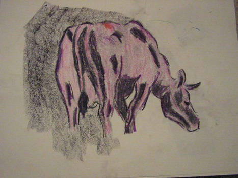 Second Cow