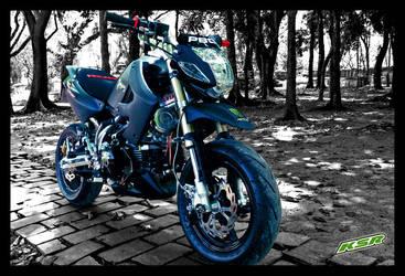 Kawasaki KSR take 1 by MunkiPhotography