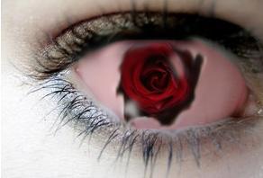 Eye rose by wolfpupgrl14