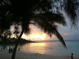 Sunset on the beach by BombinArt