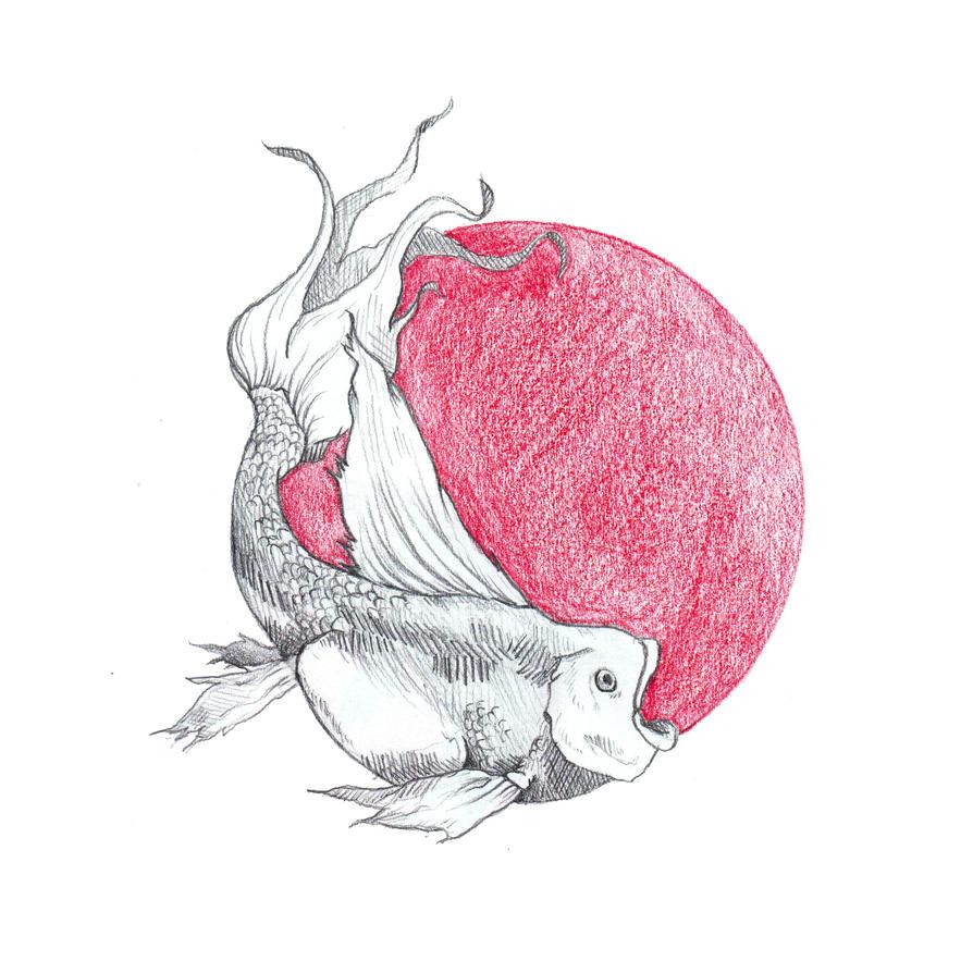 Sketchbook 001 Fish by BombinArt