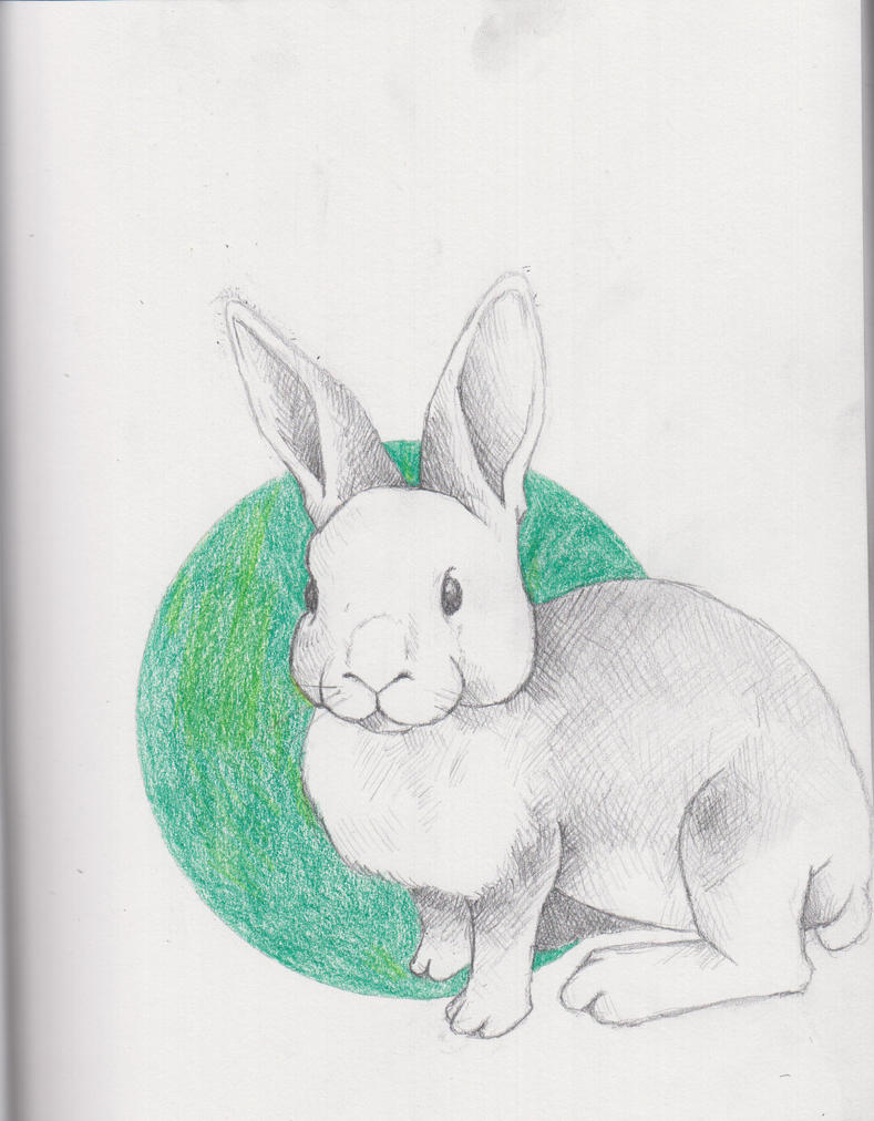Sketchbook 003 Bunny by BombinArt