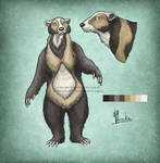 Painted Bear Adopt [OPEN]