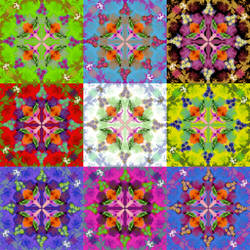 Pattern #1B - mosaic