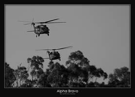 Alpha Bravo by AB-Photography