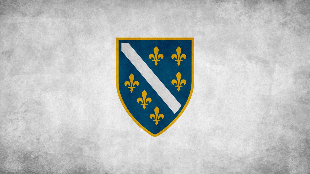 Bosnia and Herzegowina Grunge by SyNDiKaTa-NP