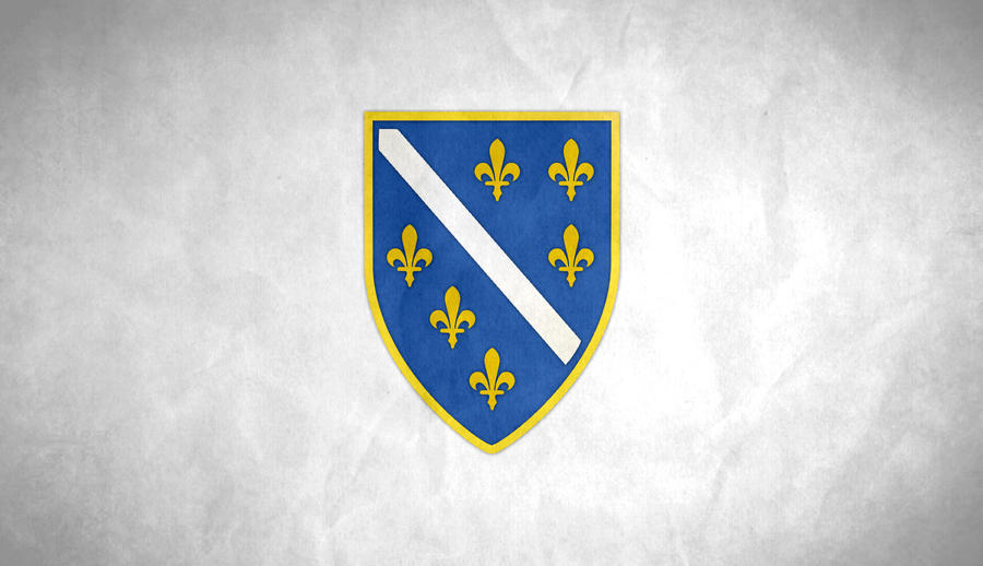 Flag of Bosnia and Herzegowina Grunge by SyNDiKaTa-NP