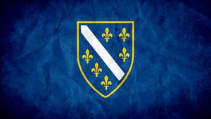 Bosnian Flag Grunge Blue V2.0
