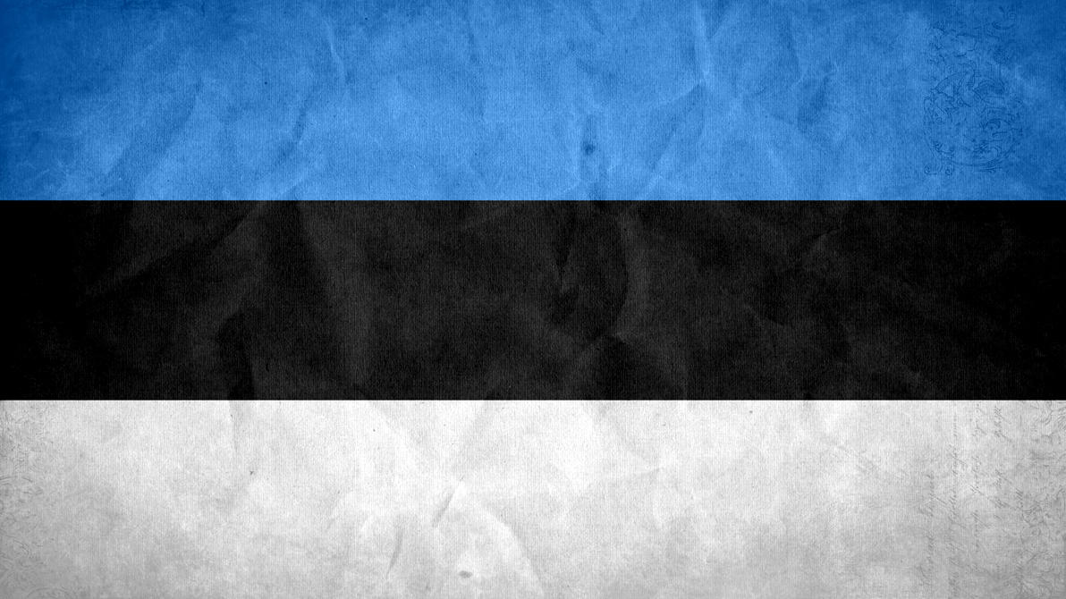 Estonia Grunge Flag by SyNDiKaTa-NP