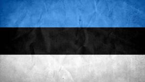 Estonia Grunge Flag by SyNDiKaTa-NP