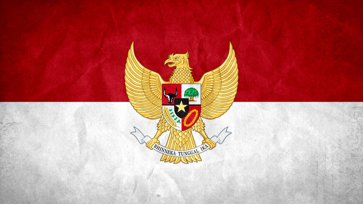 http://pre10.deviantart.net/6cd9/th/pre/i/2013/093/4/d/indonesia_grunge_flag_w__coat_of_arms_by_syndikata_np-d609vsc.jpg