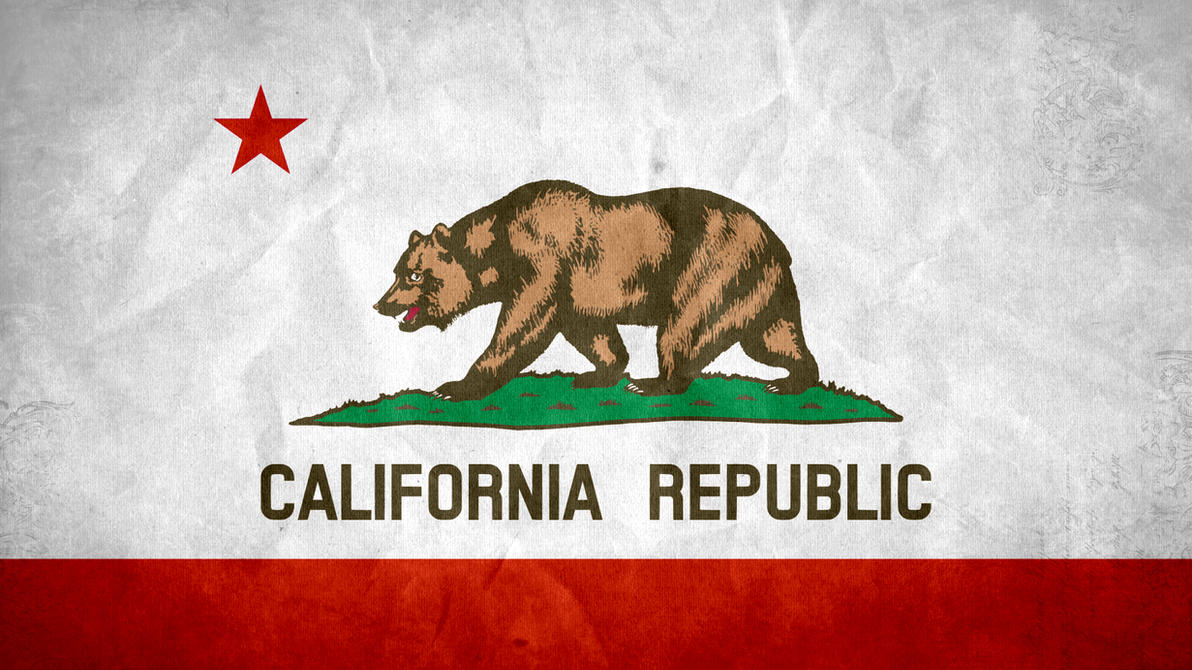 California State Grunge Flag By SyNDiKaTa NP