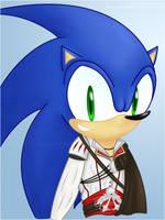 .: Fastest Assassin Alive by ShadowcatKirara