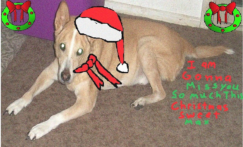 I am gonna Miss You Max This Christmas 1 by Blood-Moon1979