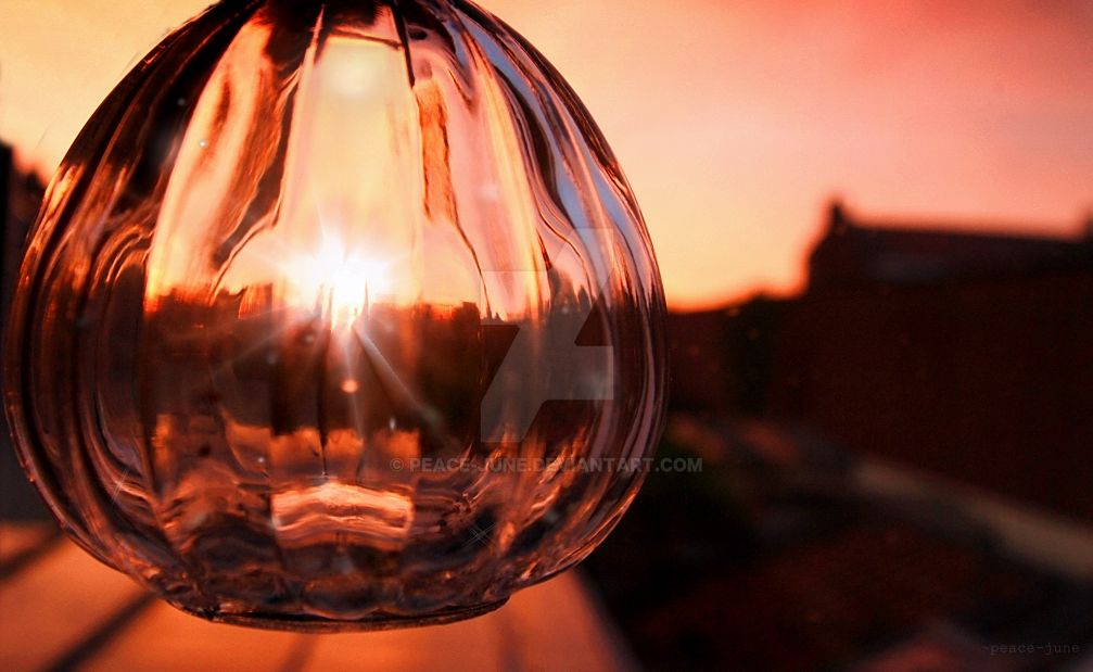 Capture the magic sunset in a vase by Peace-June