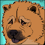 Chow Chow Colored by iMoiety