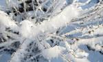 Frozen wind by Maiyoko