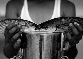 .:fish love:. by neslihans