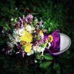 .:my spring:.